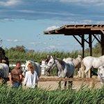 Possibilité de promenades à cheval