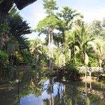 Sepilok Jungle Resort Picture