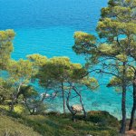Kassandra Peninsula Is Renowned Arround The World For Its Gorgeous Beaches