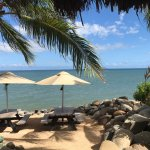 The Beach Shack Bar & Grill