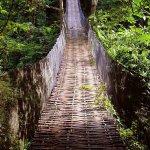 Pont de bamboo conduisant à la villa Plenitude