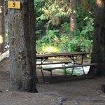 tent site #5