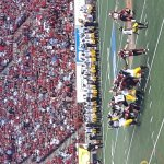 Stamps 60 - Tiger Cats 1....GO STAMPS GO!