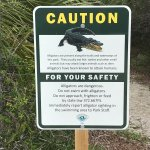 Watch out for gators!