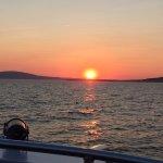 Bar Harbor Whale Watch Company Foto