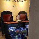 Fish Spa inside the Awe Spa