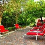 Photo of Hilton Garden Inn Charleston Airport