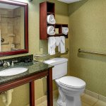 Hampton Inn Johnson City Foto