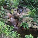 Grapevine Botanical Garden waterfall
