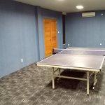 Best Table Tennis / Pingpong Venue in Bali