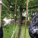 Aerial Extreme Bedale