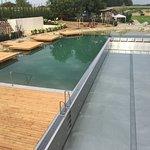 Neuer Außenbereich mit Schwimmbecken und Schwimmteich