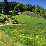 Les Hautes-Mynes