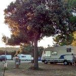 Zdjęcie Camping Arena Stoja