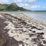 Beach Villa Seychelles Foto