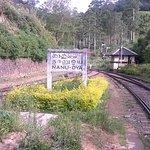 Nanuoya ralway station