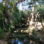 Water Mills Milopotamos