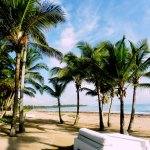 Picture Postcard Beach
