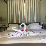 Romantic Swans on King-Size Bed