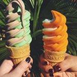 Sun Harvest Citrus Foto