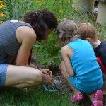 Eco-Exploration Nature programs for families