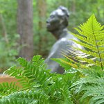 The Women's Walk along the wooded path is a serene experience
