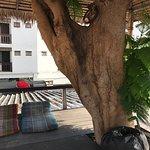 Photo de Central Guesthouse