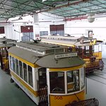 A great range of trams and buses from over 100 years ago to modern day.