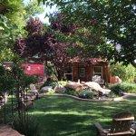 The beautiful backyard scene