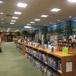 The most amazing Children's section that I have ever seen!