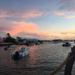ภาพถ่ายของ The Harbourfront