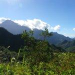 Dans la Caldeira à la vallée de Papenoo.