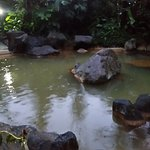 One of the hot springs in the rain.