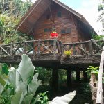 Our tree-house lodge