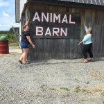 Goughan's Berry Farm