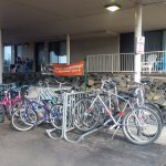 Bike rentals, a great family activity.