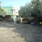 Photo of Galilee Bedouin Camplodge