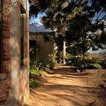 Buda Home & Garden