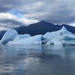 Eisberge im See