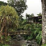 Foto di Los Lagos Hotel Spa & Resort