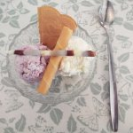 Blackcurrant & Apple ans Coconut & Cream Ice Cream