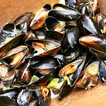beautiful mussels