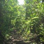 Adventure Tours Costa Rica ATV jungle tours