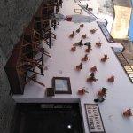 Photo of Alcaravan