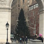 I love this place. It has a hidden NYC Christmas tree.