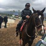 Santa Anita Race Park Foto
