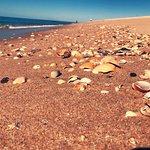 Foto de Ilha Deserta