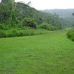 old grass runway