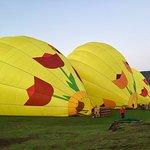Photo of Napa Valley Balloons, Inc.