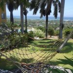 Green lush gardens, four hammocks, so much breeze overlooking the ocean!